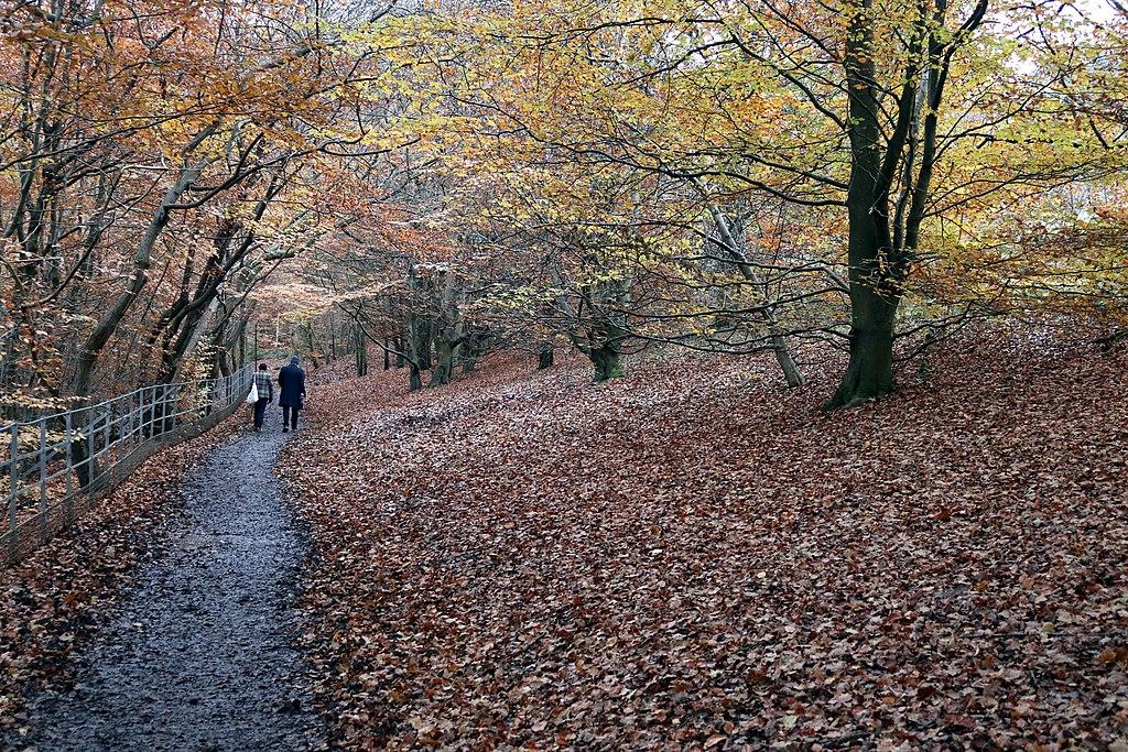 Météo Glasgow : Prévision à 15 jours, climat & quand venir ?
