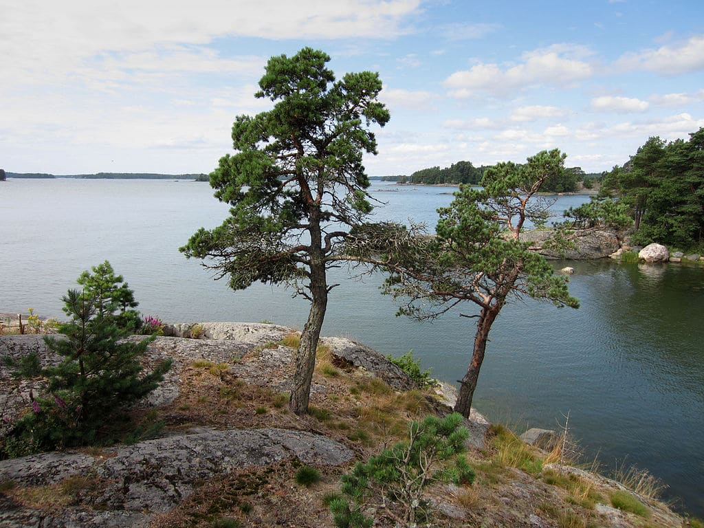 Paysage de Finlande : Sur la mer Baltique près d'Helsinki - Photo de RalfR