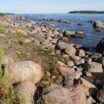 Île de Lauttasaari à Helsinki, plage et bois de pins