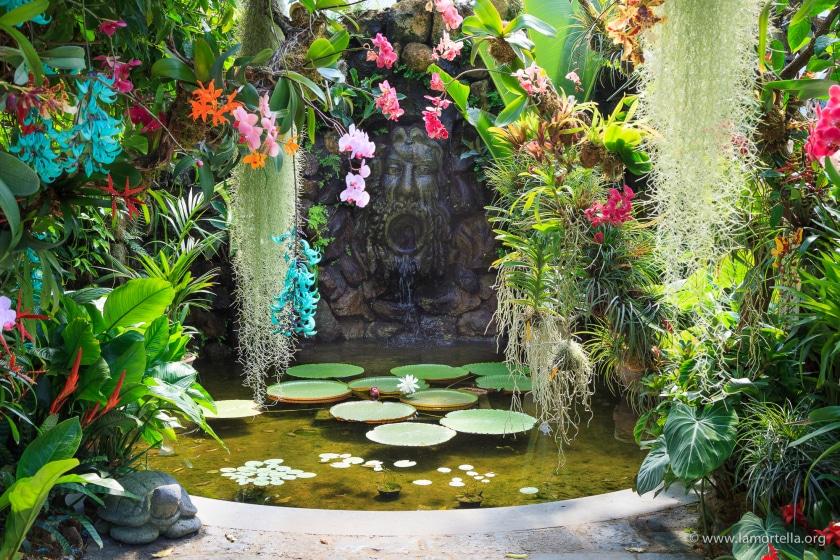 Jardin botanique Mortella à Ischia près Naples.