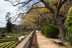 Jardin botanique d'Ajuda à Lisbonne : Désuet et charmant [Ajuda]
