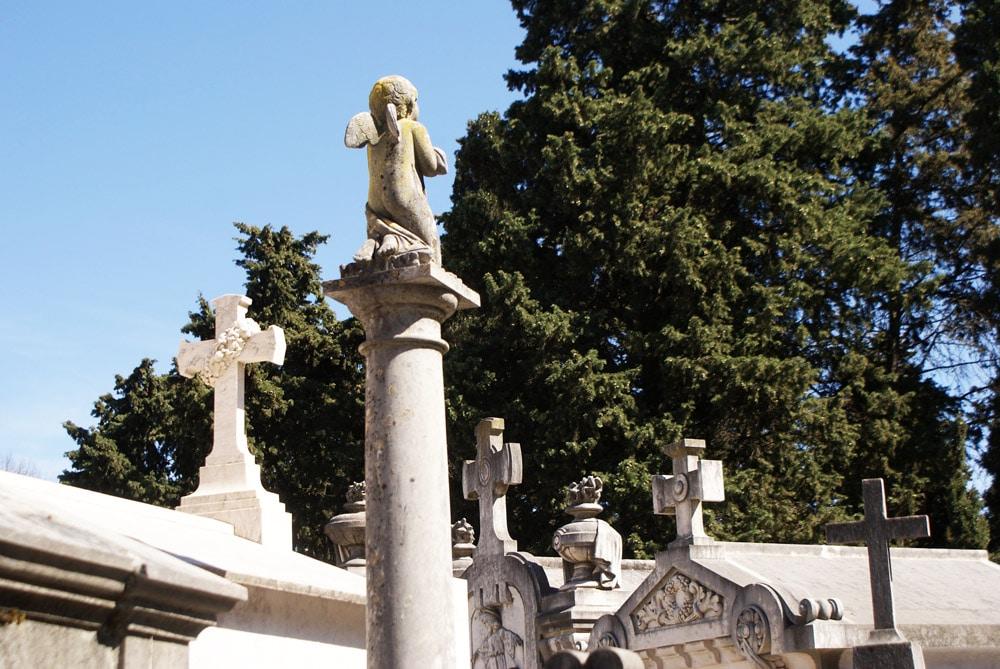 Sculpture et cyprès au cimetière de Prazeres à Lisbonne.