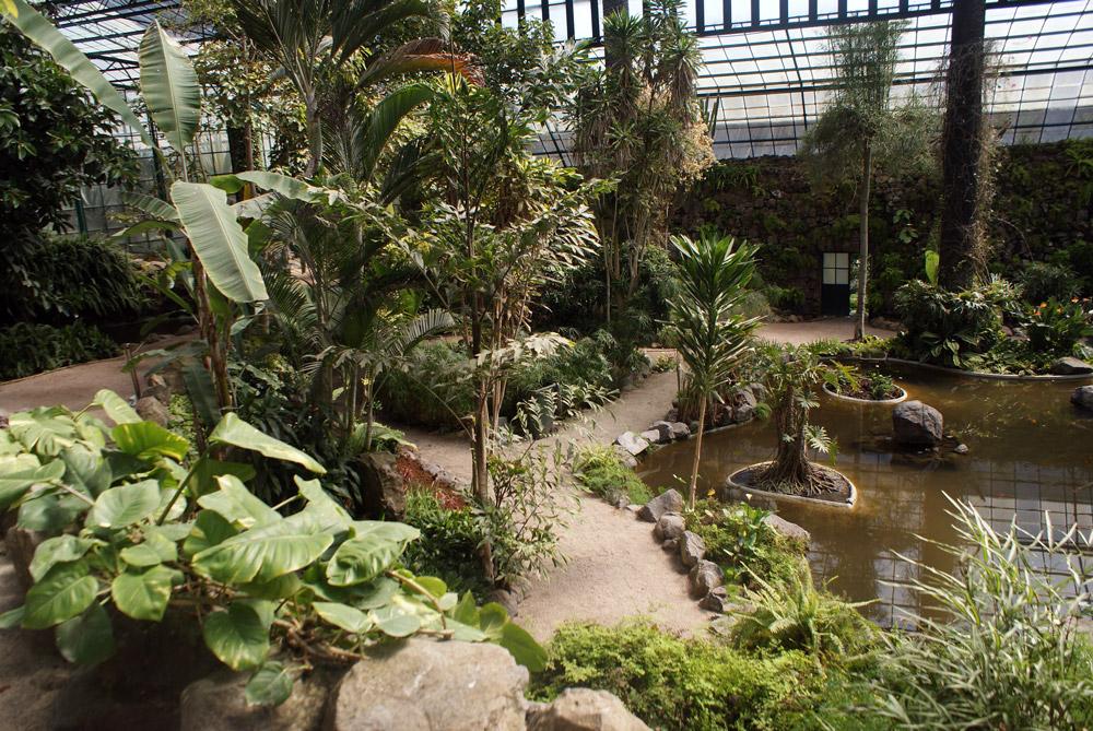 Serre chaude du Jardin botanique d'Estufa fria à Lisbonne.