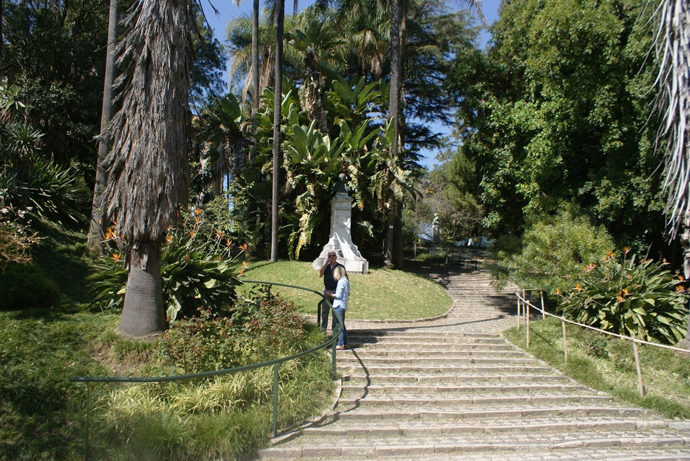 """Escalier entre la partie """"Classe"""" et la partie """"arboretum"""" du jardin botanique de Lisbonne."""