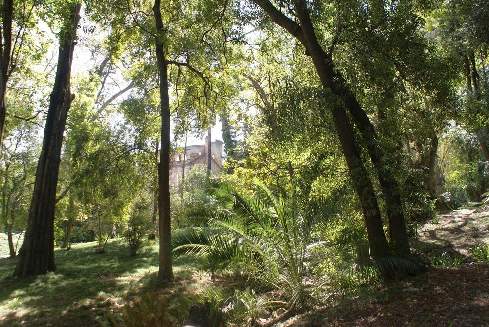 A l'ombre du Jardin botanique de l'Université de Lisbonne