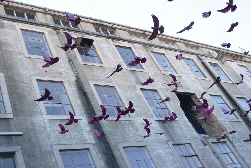 > Installation artistique à la LX Factory à Lisbonne.