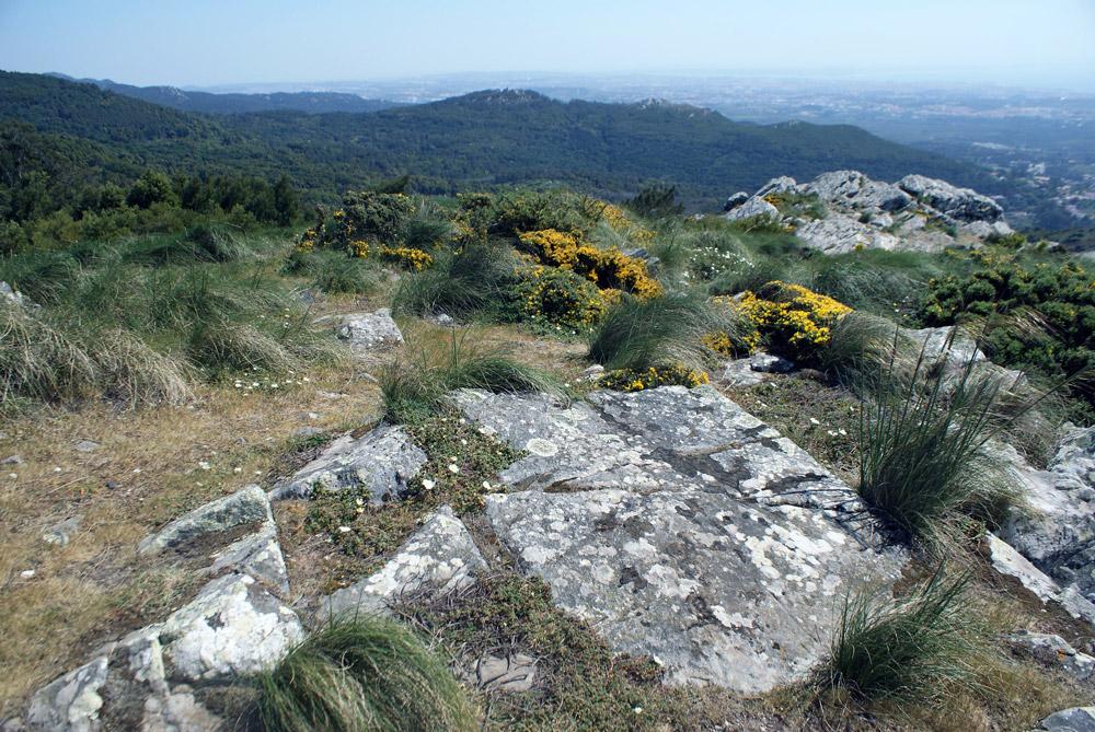 Vue depuis le sanctuaire de Peninha au dessus de Sintra et du littoral.