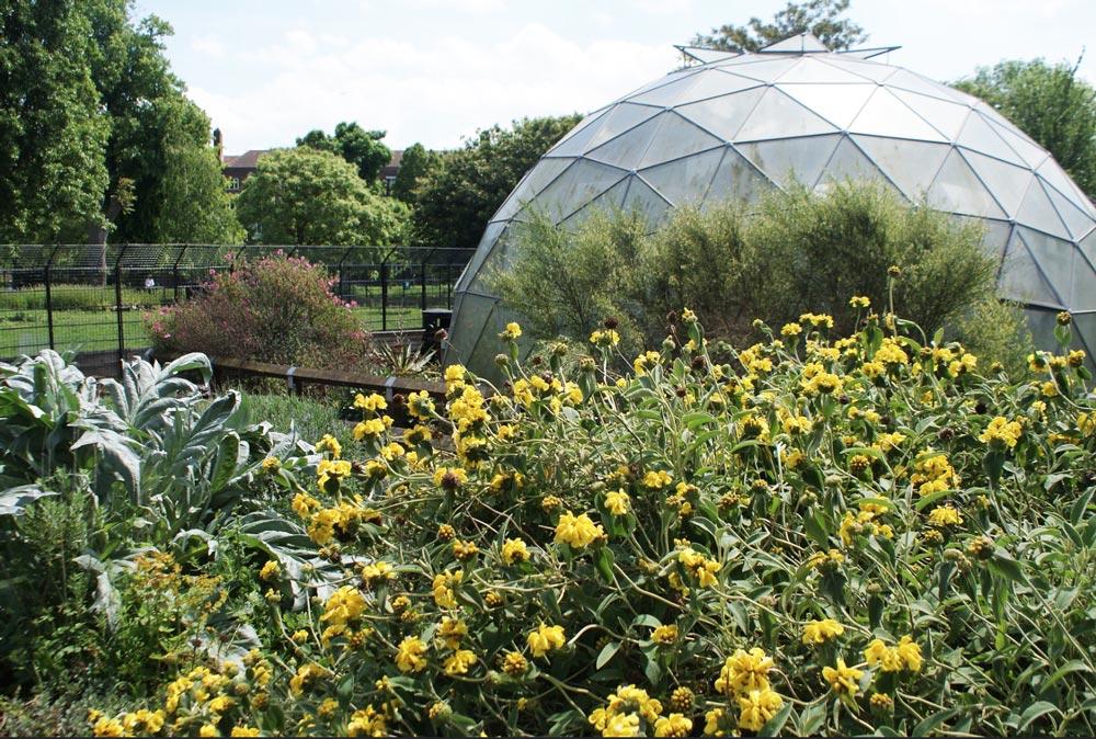 Dans la partie plus botanique du Clissold Park, quartier de Stoke Newington à Londres.