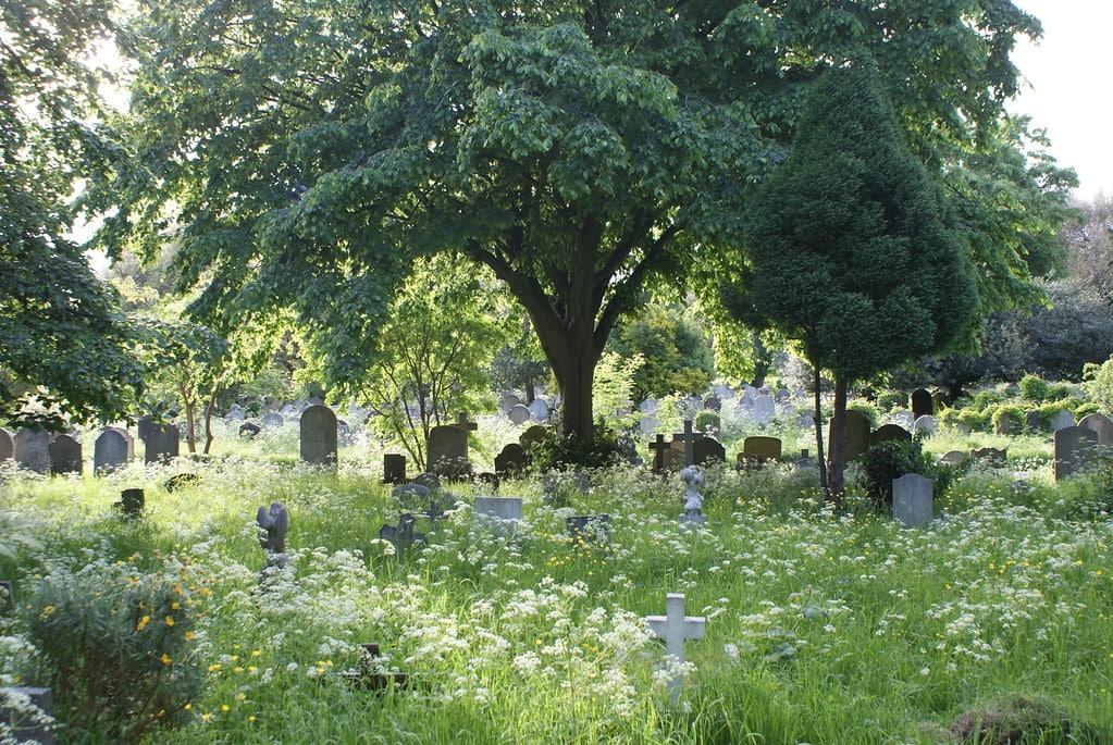 Dans le cimetière de Brompton dans le quartier de Fulham à Londres.