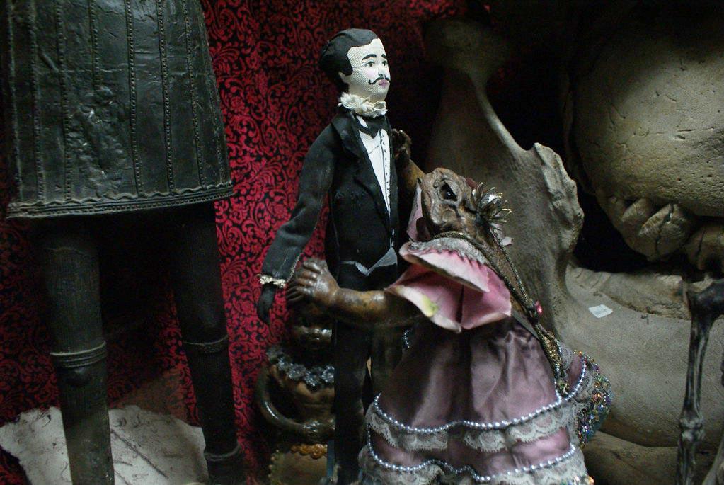 Viktor Wynd Museum, cabinet de curiosités près de Bethnal Green à Londres.