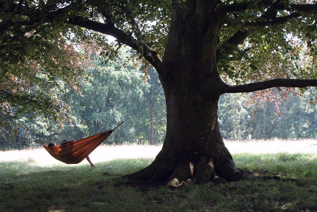 La belle vie dans un hamac dans le parc de Hampstead Heath à Londres.