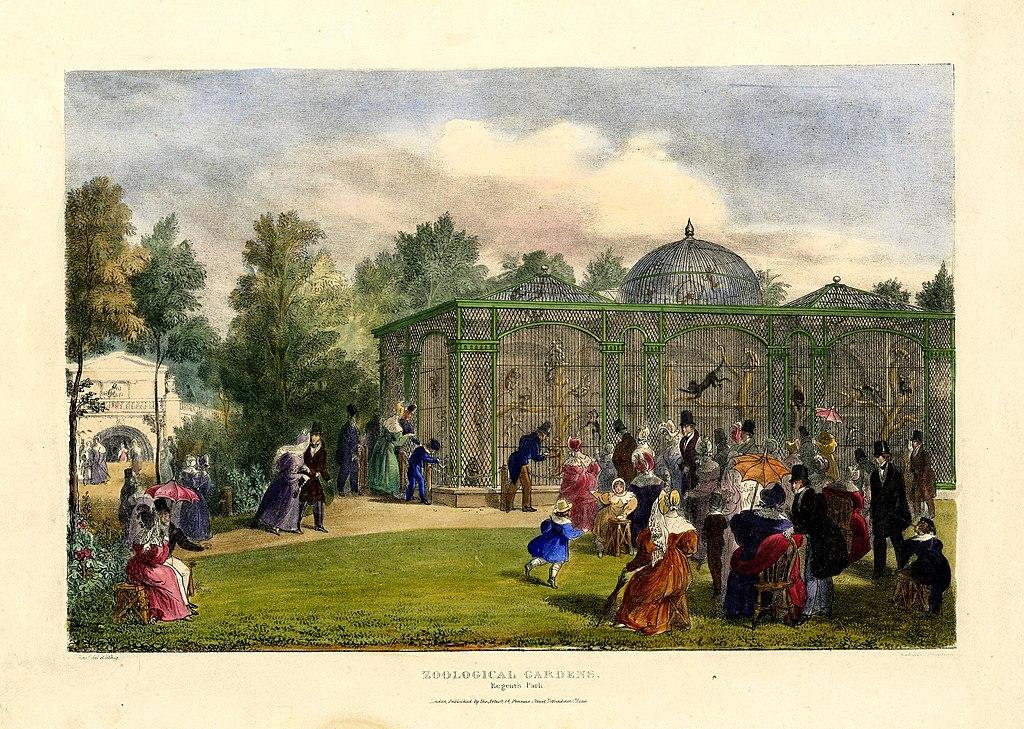 Zoo de Londres à Regent's park en 1835.