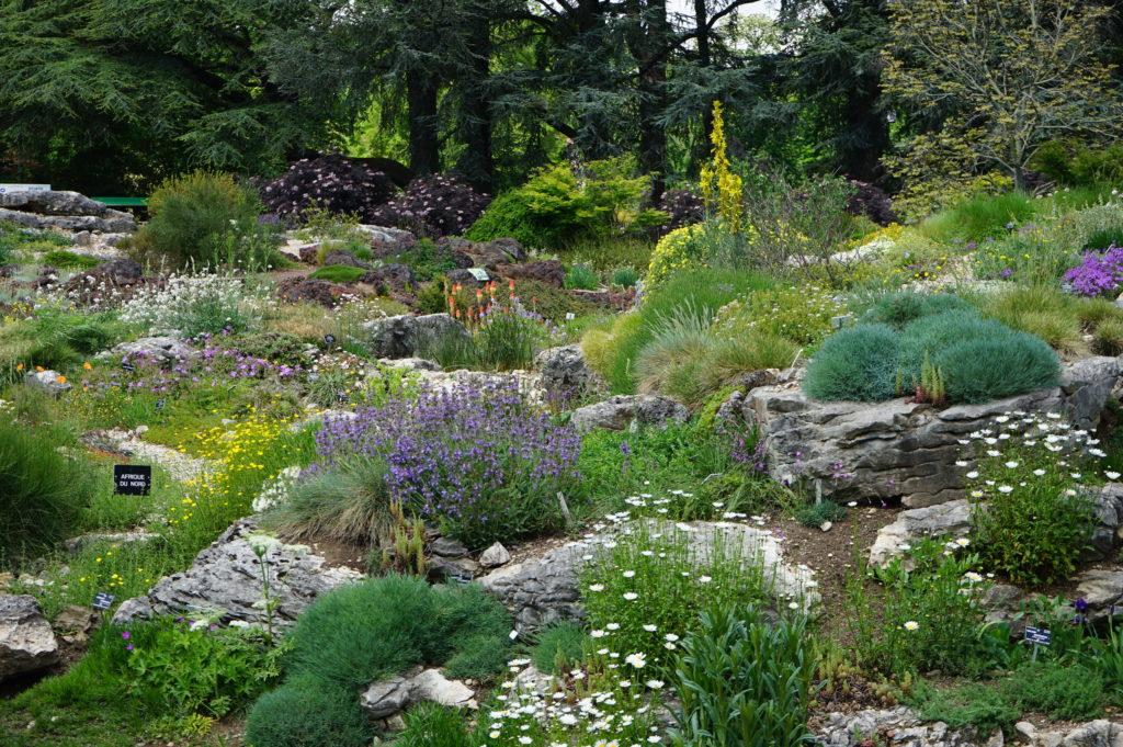 Jardin de rocaille du Parc de la Tête d'Or à Lyon.