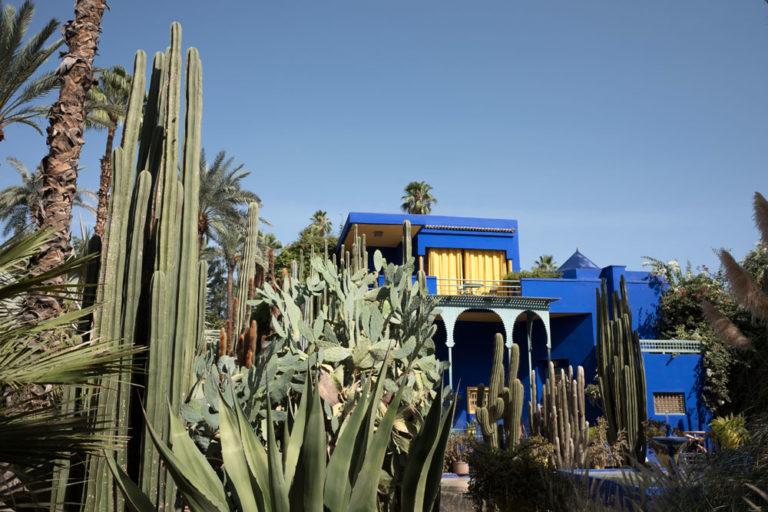Jardin de Majorelle dans le quartier du Guéliz à Marrakech - Photo d'Edward Hart