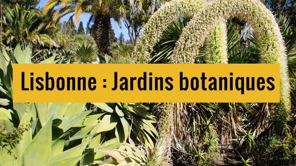 Jardins botaniques de Lisbonne sur Youtube.