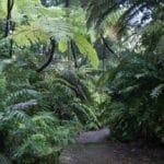 Jardin botanique de Naples : Superbe et gratuit [San Carlo all'Arena]