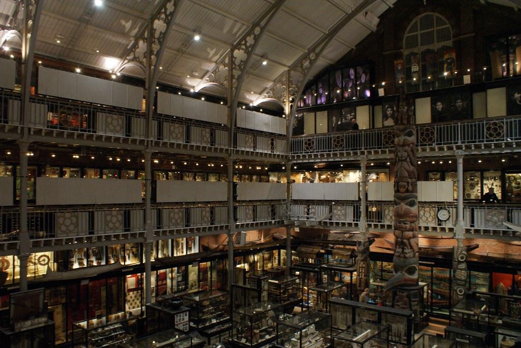 oxford Cour intérieure du musée d'anthropologie Pitt Rivers d'Oxford