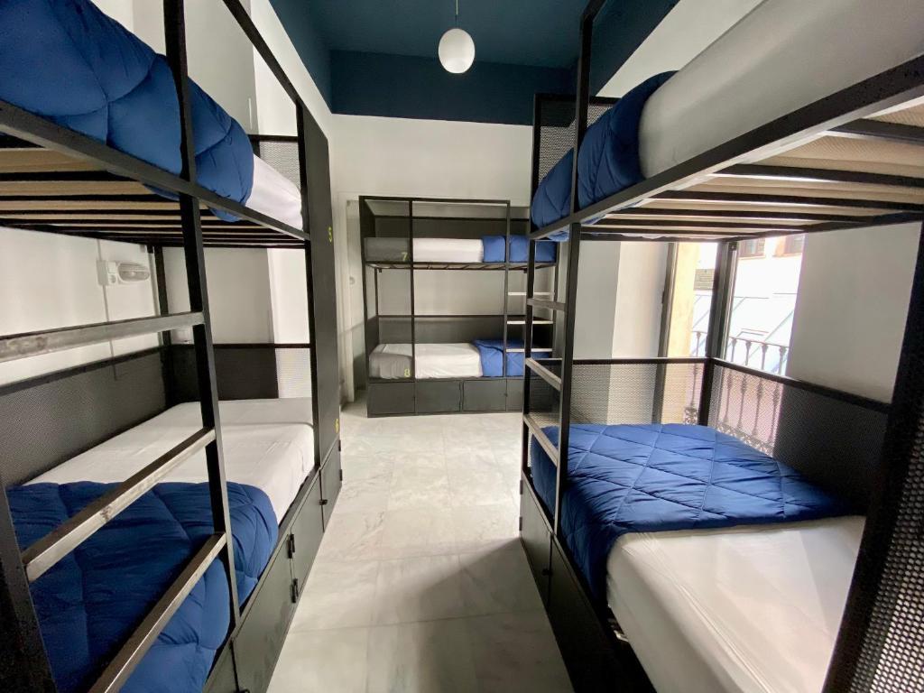 Oasis Backpackers Hostel Sevilla, auberge de jeunesse à Séville.