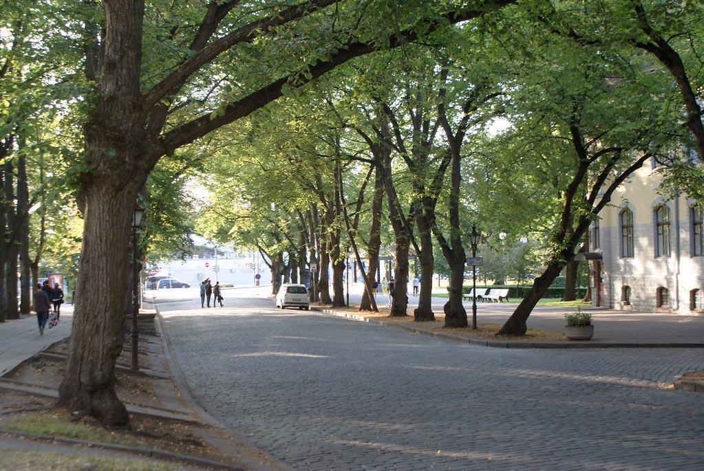 Parc autour de la Vieille Ville de Tallinn.