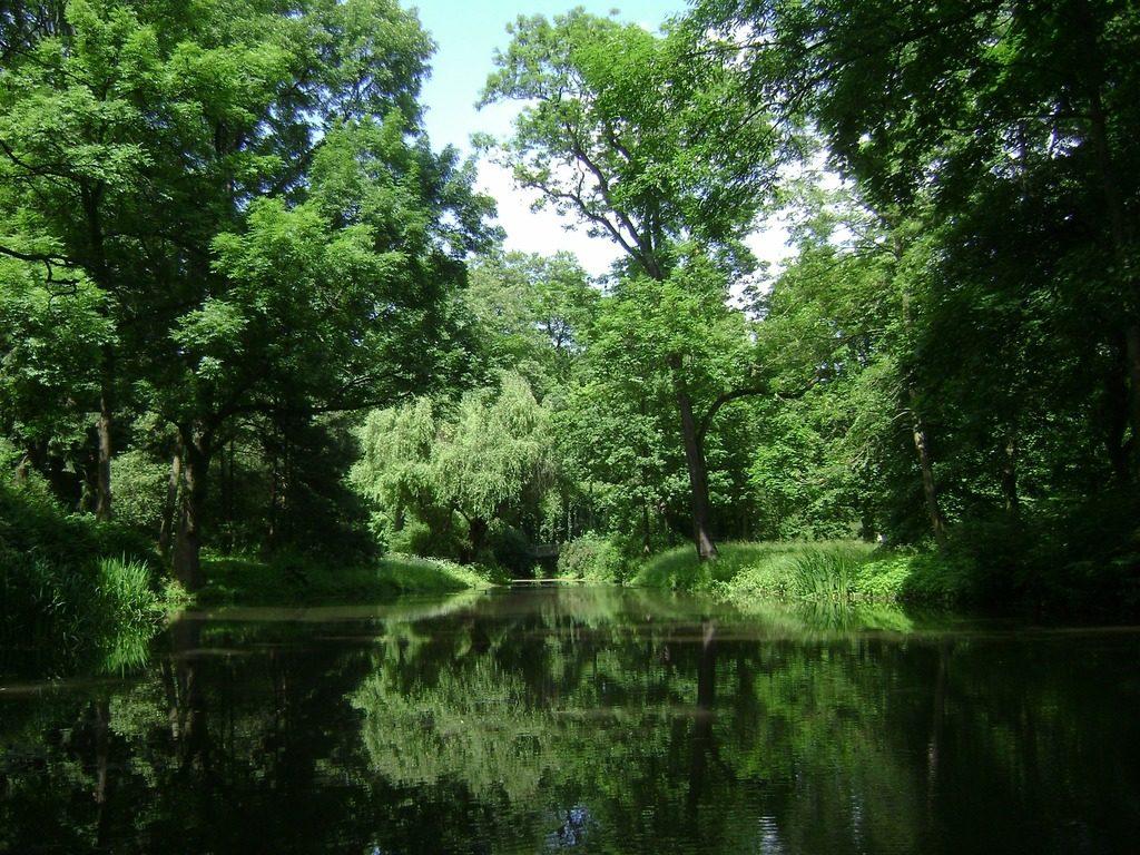 Dans la verdure intense d'un parc de Varsovie.
