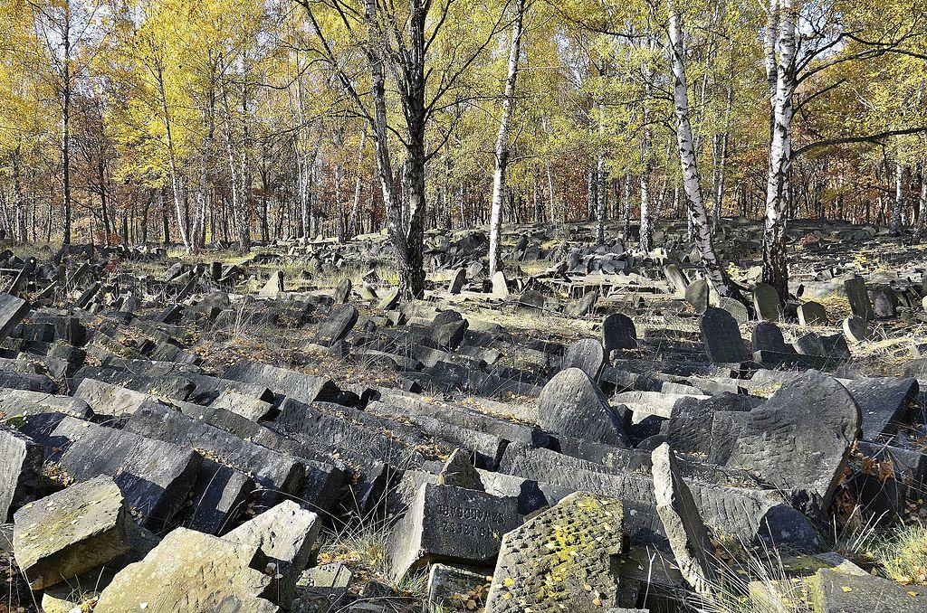 Tombes renversées du Cimetière juif de Brodno à Varsovie. Photo d'Adrian Grycuk