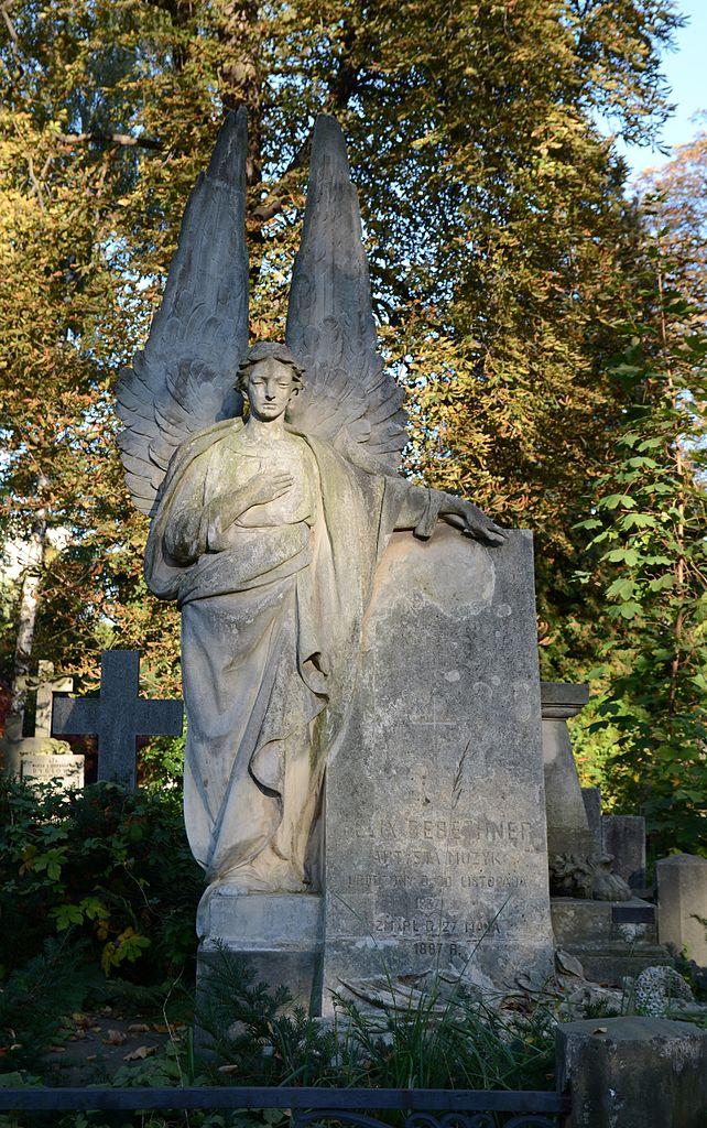 varsovie-Cmentarz_ewangelicki_na_Woli_-_grób_Feliksa_Gebethnera Marcin Białek