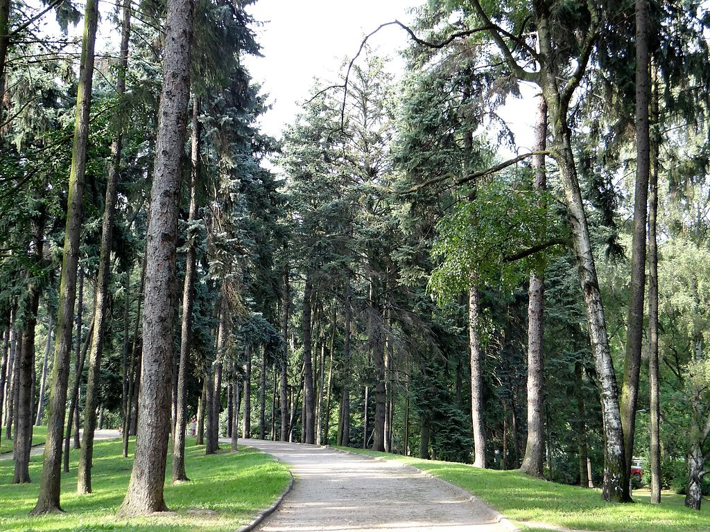> Allée boisée du parc Skaryszewski dans le quartier de Praga à Varsovie. Photo de Jolanta Dyr
