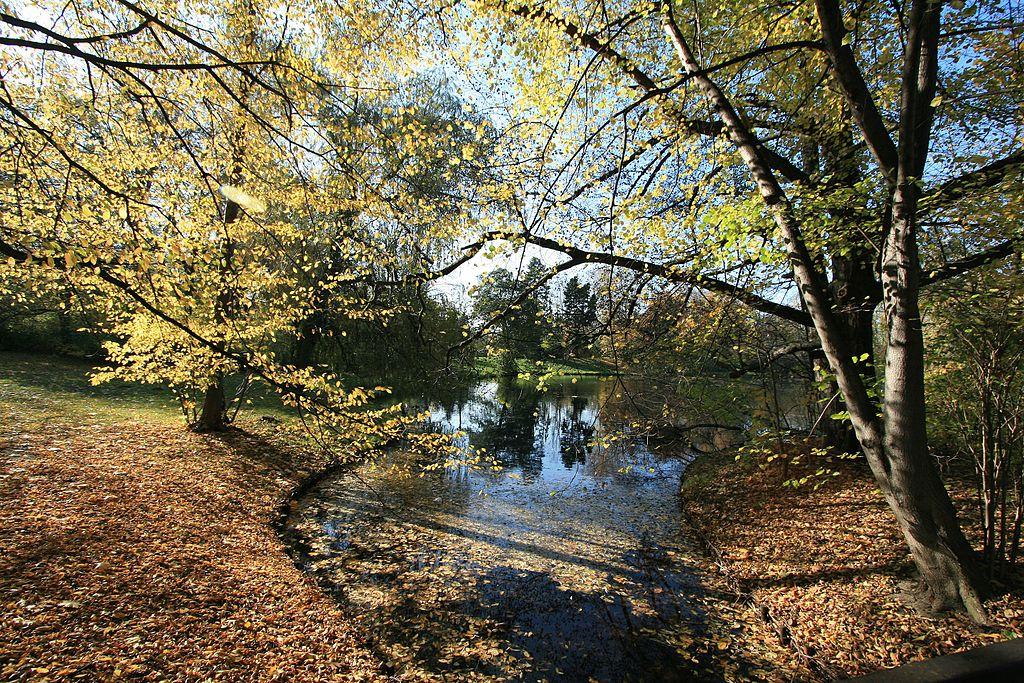 Dans le parc Skaryszewski à la limite entre les quartiers de Saska Kepa et de Praga à Varsovie - Photo de Michal Gorski
