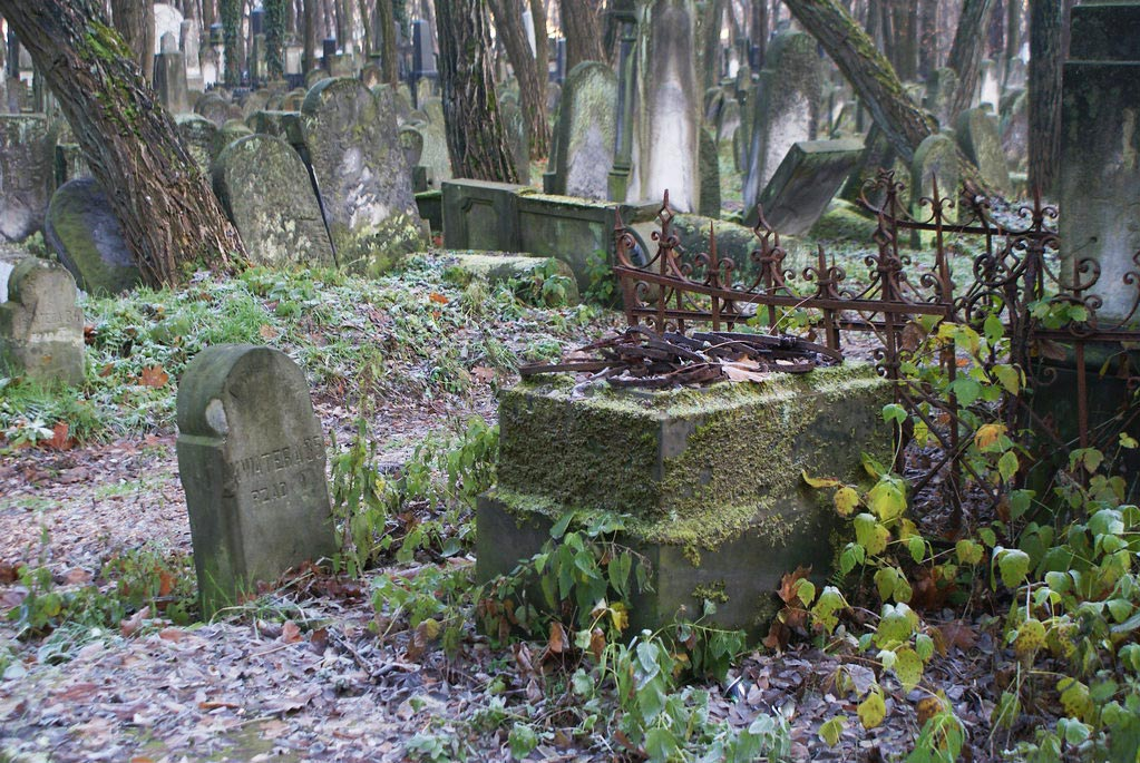 Dans le cimetière juif de Varsovie na Okopowej.