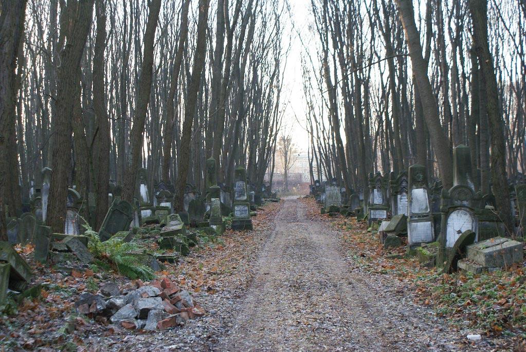 Dans le cimetière juif de Varsovie.