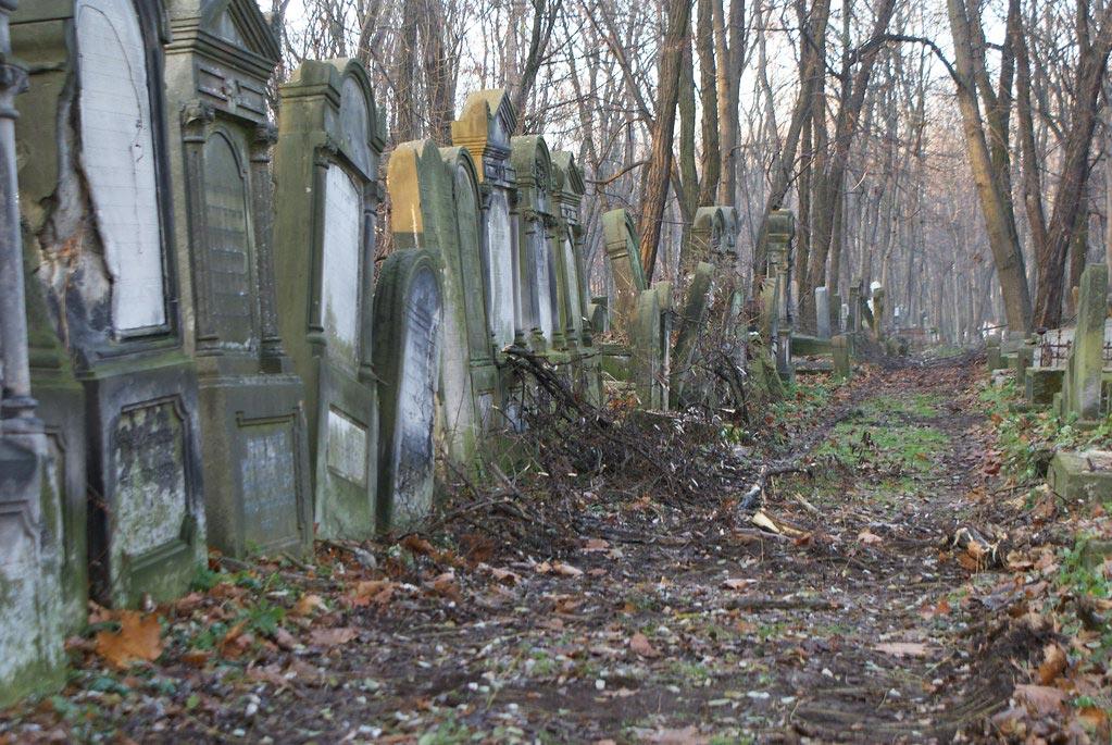 Dans le cimetière juif de Varsovie na Okopowej