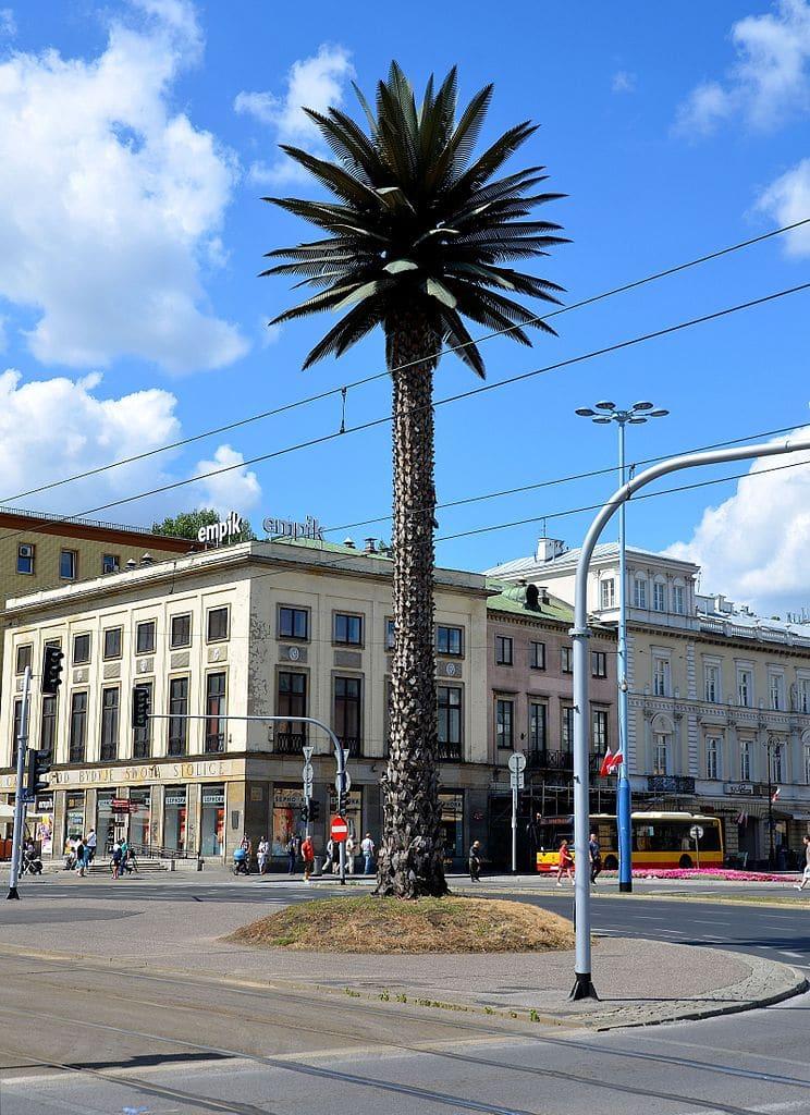 Palmier artificiel de Varsovie sur les allées de Jérusalem. Photo d'Adrian Grycuk
